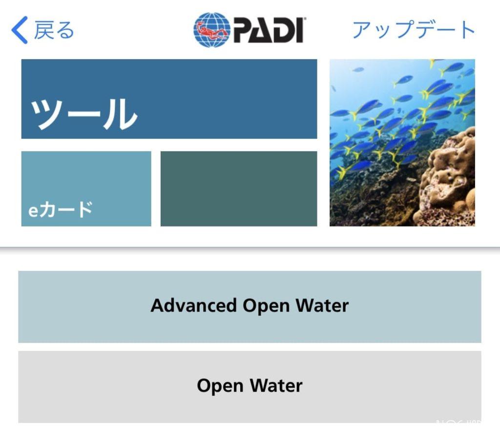 タイ プーケット ダイビング PADI e-Card
