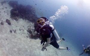 タイ プーケット ダイビング 海ブログ