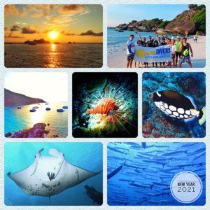 タイ プーケット シミラン ダイブクルーズ 海ブログ