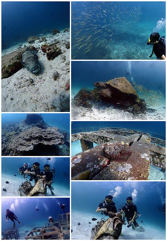 タイ プーケット ダイビングライセンス 海ブログ