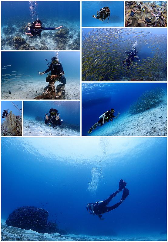 タイ プーケット ファンダイビング 体験ダイビング 海ブログ