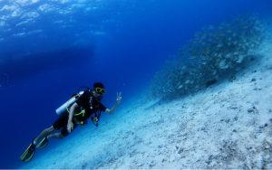 タイ プーケット 体験ダイビング 海ブログ