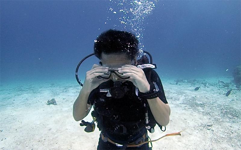 タイ プーケット 体験ダイビング ステップ